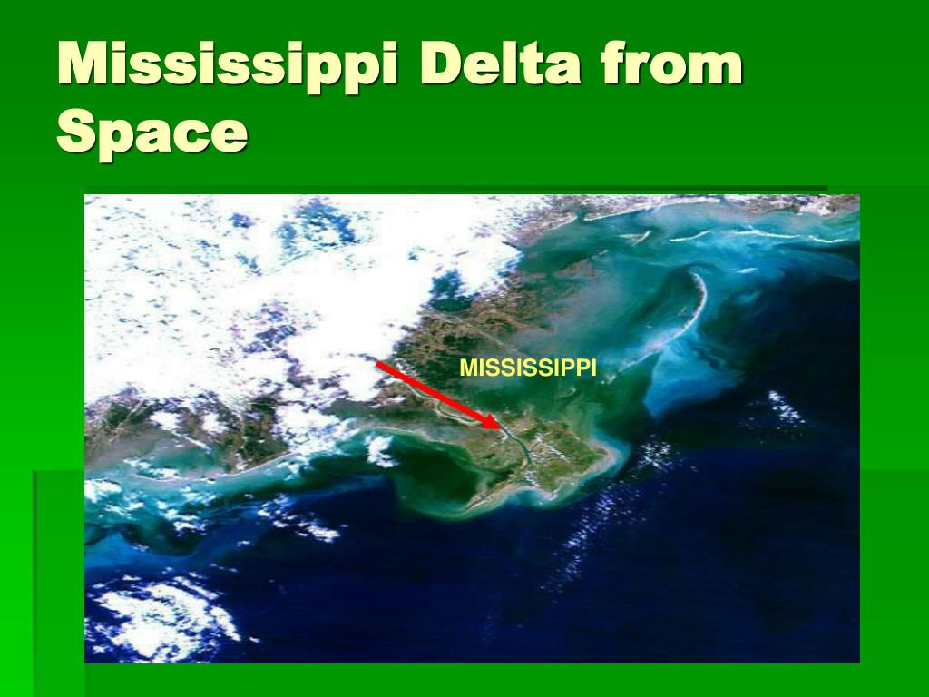Mississippi Delta from Space