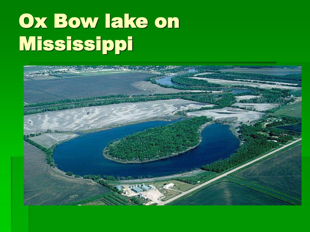 Ox Bow lake on Mississippi