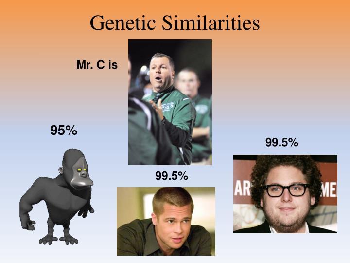 Genetic Similarities