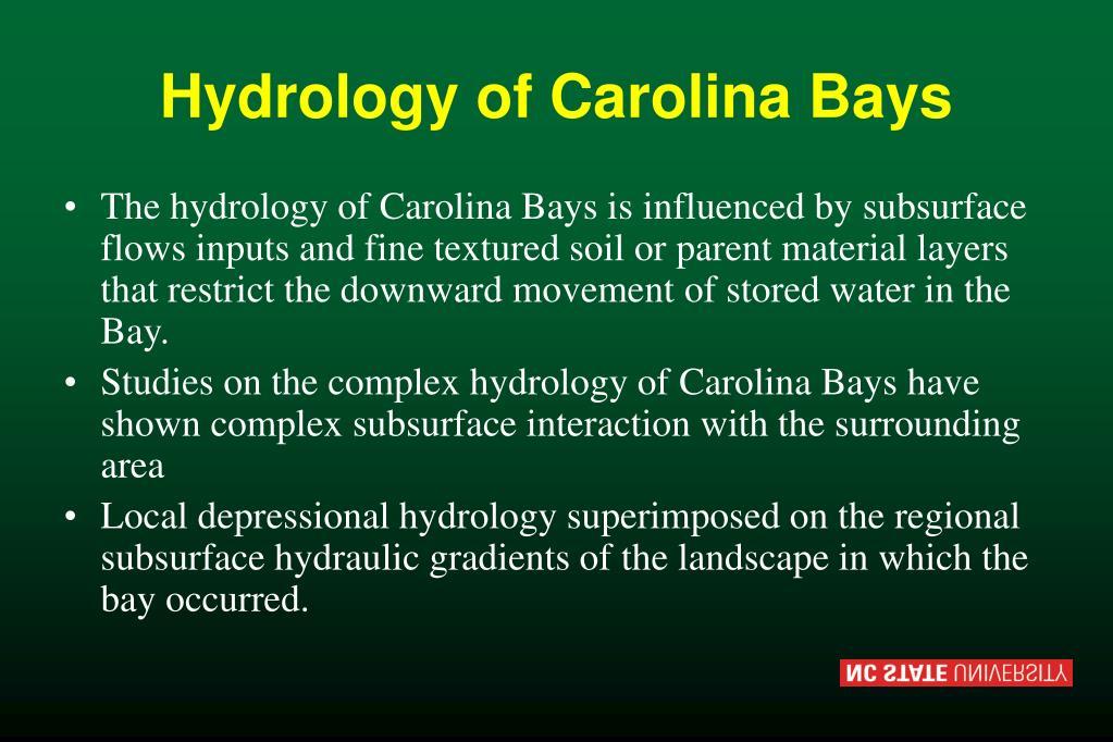 Hydrology of Carolina Bays