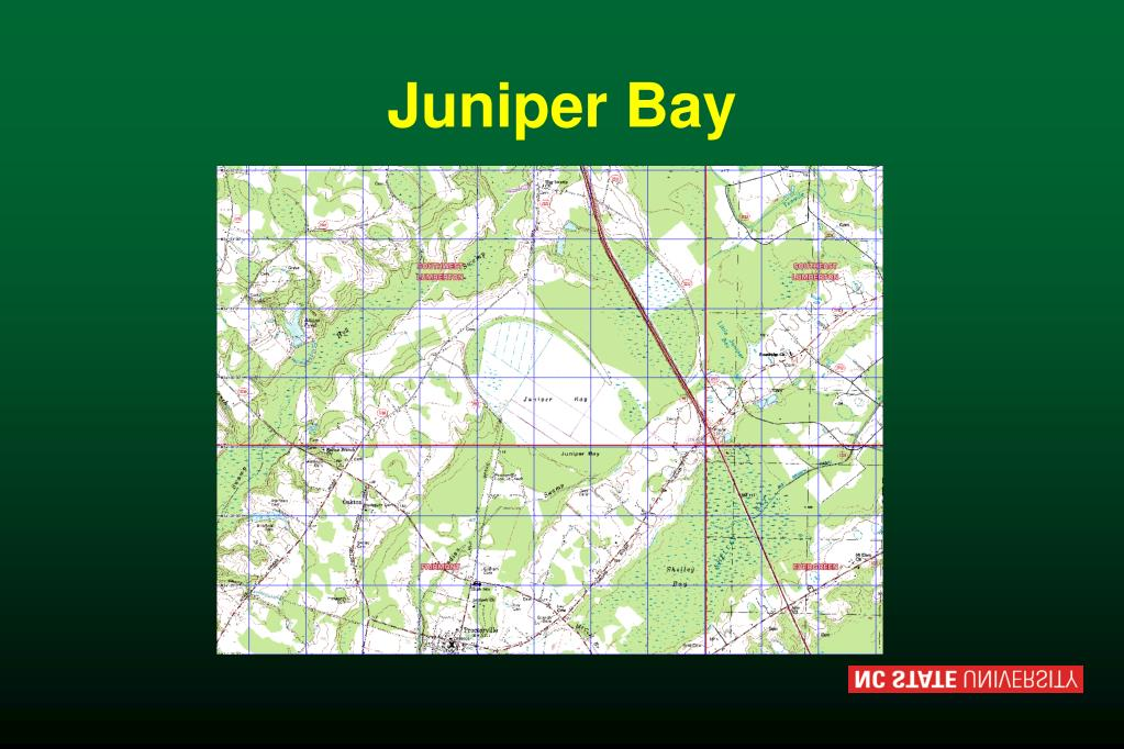 Juniper Bay