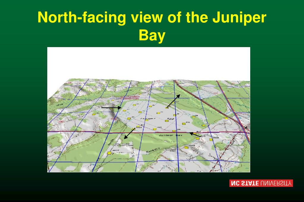 North-facing view of the Juniper Bay