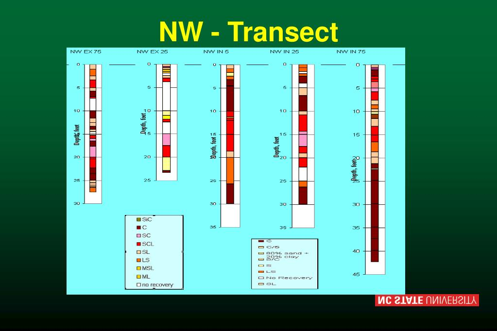 NW - Transect