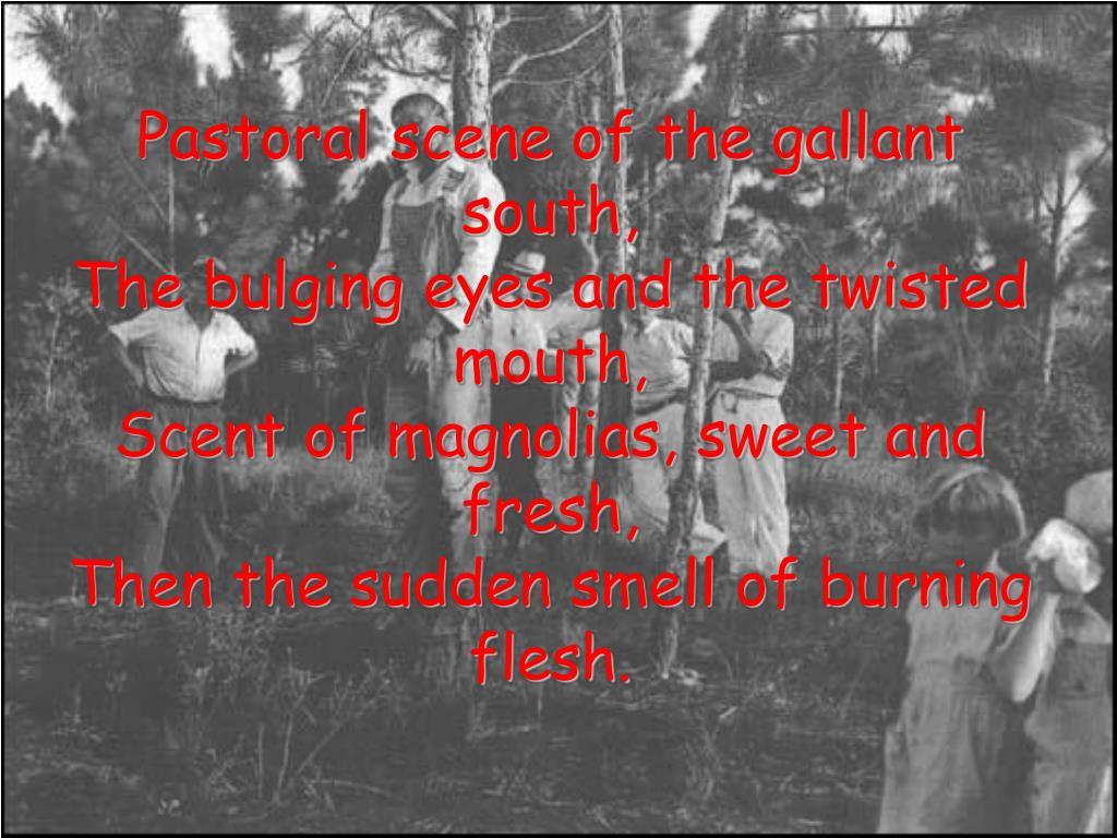 Pastoral scene of the gallant south,