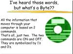 i ve heard those words but what s a byte