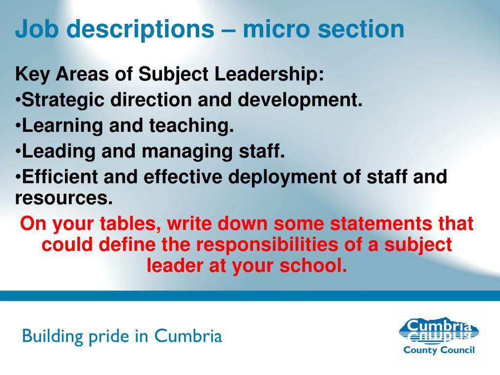 Job descriptions – micro section