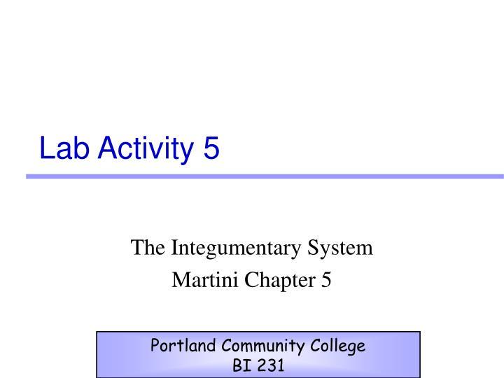 Lab activity 5