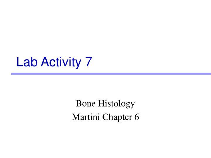 Lab Activity 7