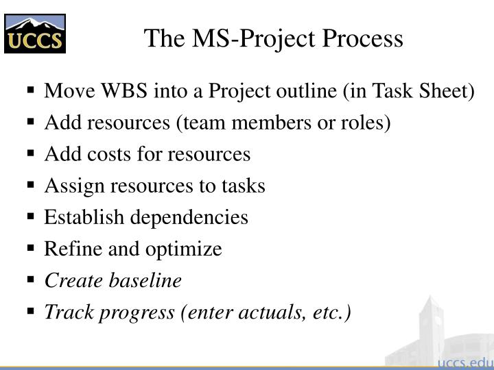 The MS-Project Process