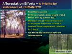 afforestation efforts a priority for sustenance of humanity