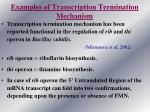 examples of transcription termination mechanism