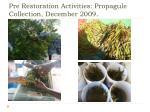pre restoration activities propagule collection december 2009