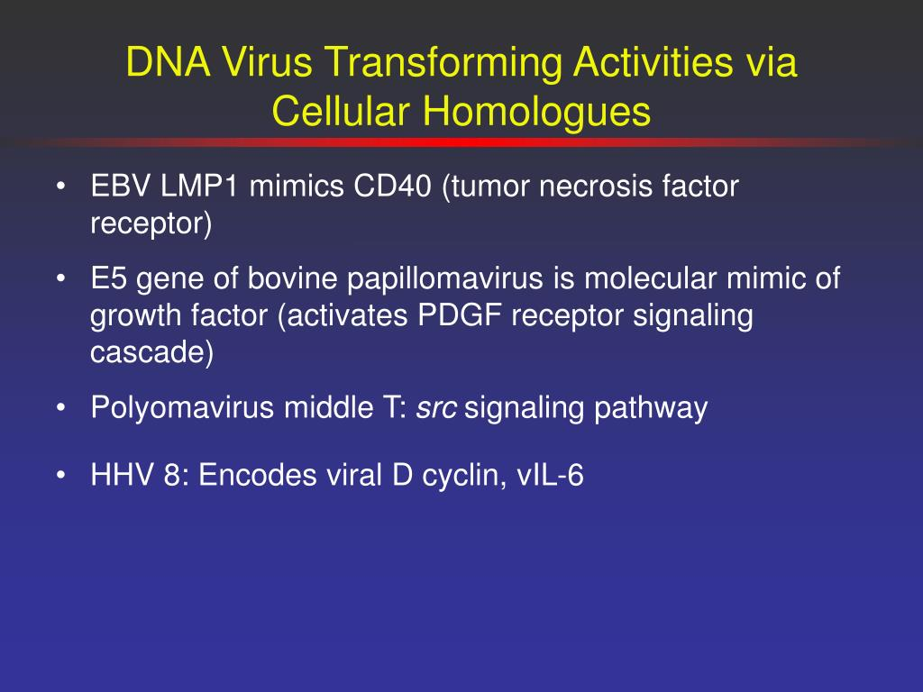 DNA Virus Transforming Activities via Cellular Homologues