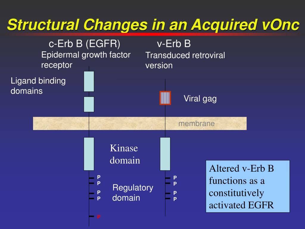 Ligand binding domains