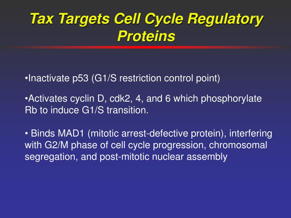 Tax Targets Cell Cycle Regulatory Proteins