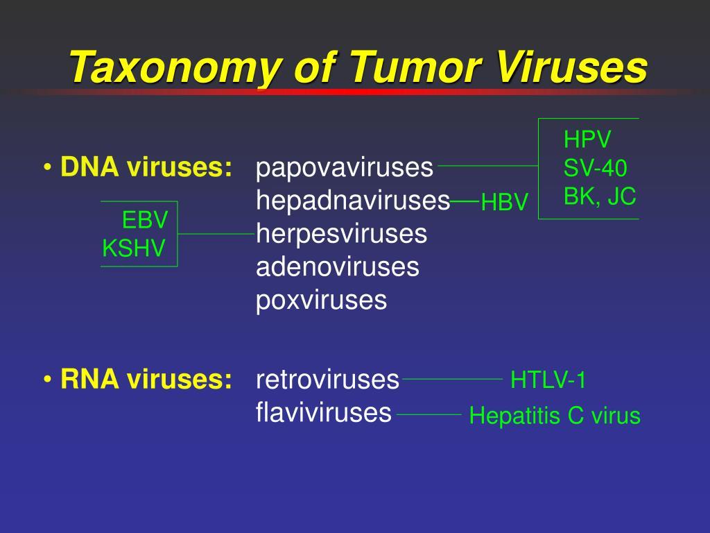 HPV SV-40 BK, JC