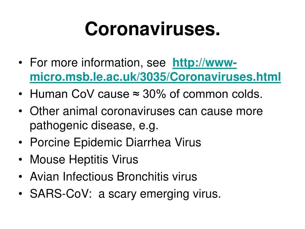 Coronaviruses.