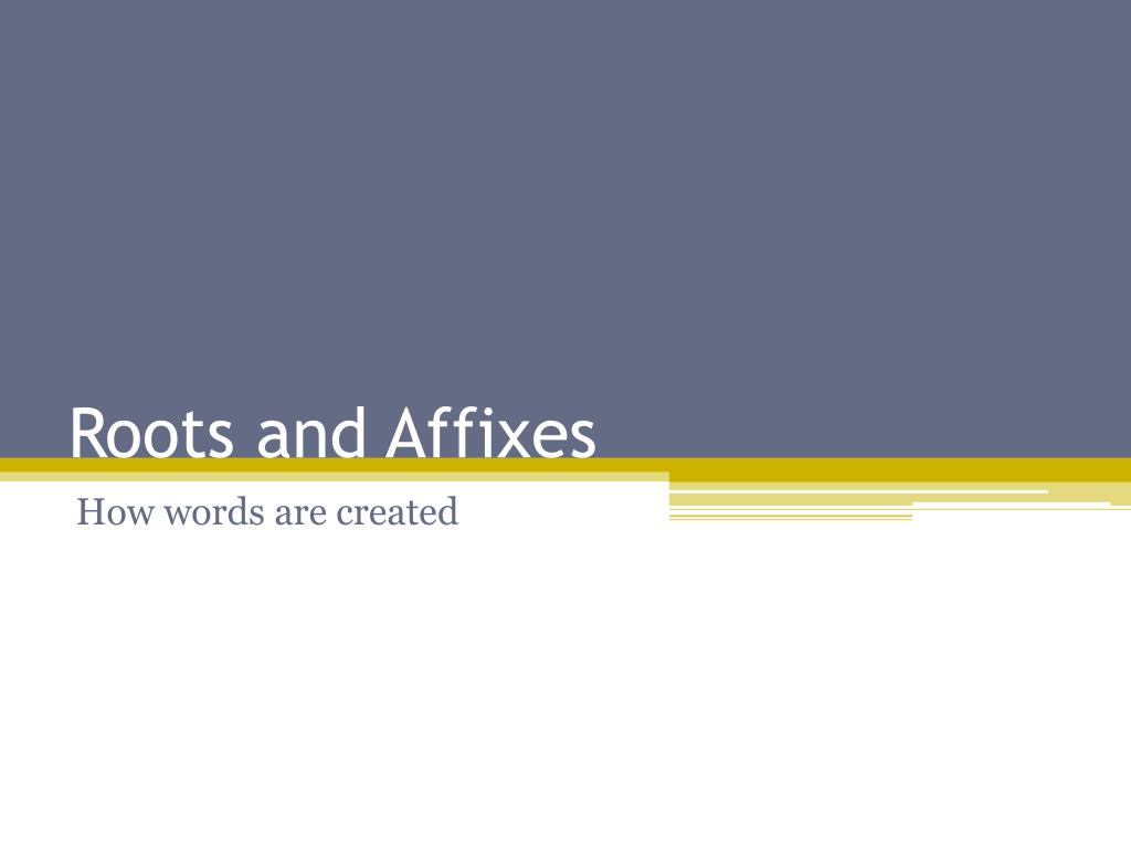 roots and affixes l.