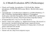 a 6 month evaluation aps i perheentupa
