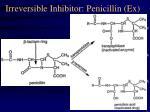irreversible inhibitor penicillin ex