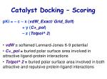 catalyst docking scoring