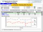 vnsny telehealth web browser gives access to patient data for all clinicians