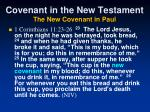 covenant in the new testament the new covenant in paul62