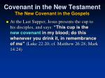 covenant in the new testament the new covenant in the gospels