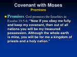 covenant with moses promises