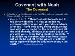covenant with noah the covenant