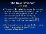 the new covenant jeremiah