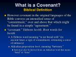 what is a covenant biblical definition