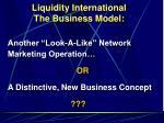 liquidity international the business model4