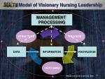 model of visionary nursing leadership11
