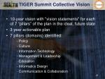 tiger summit collective vision