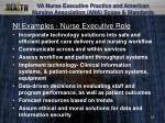 va nurse executive practice and american nursing association ana scope standards