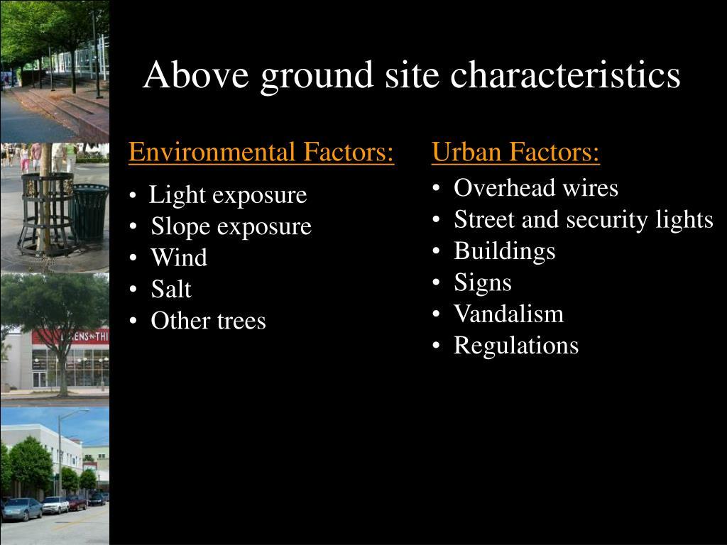 Above ground site characteristics