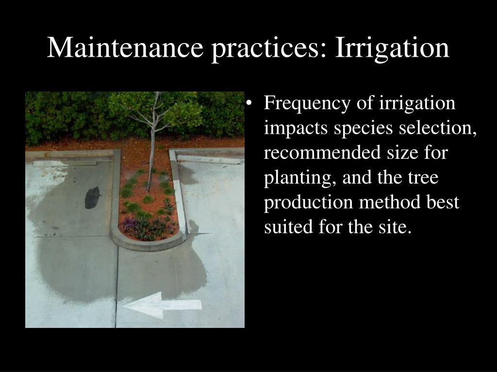 Maintenance practices: Irrigation