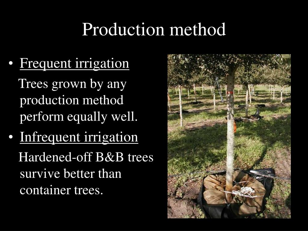 Production method