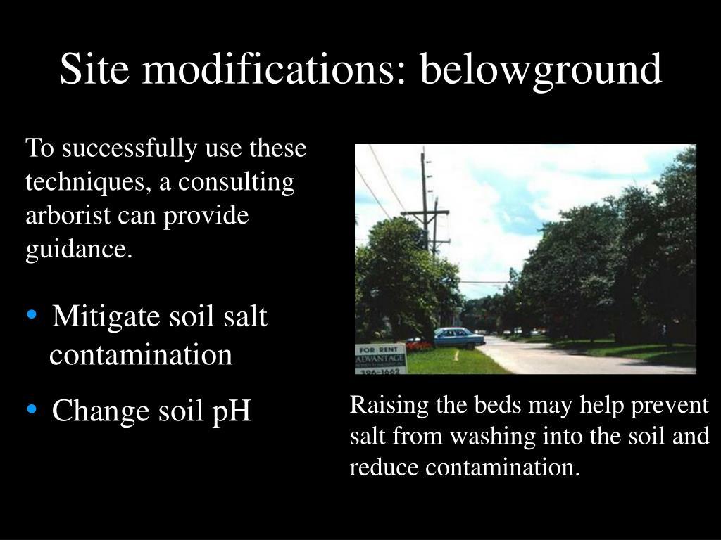 Site modifications: belowground