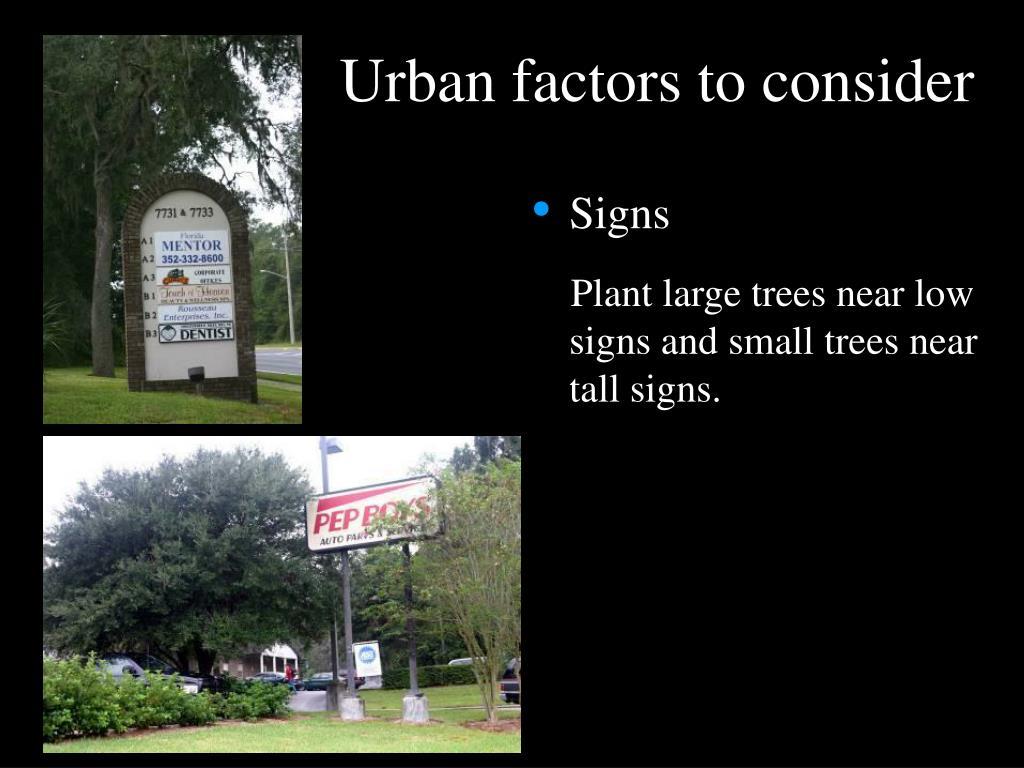 Urban factors to consider