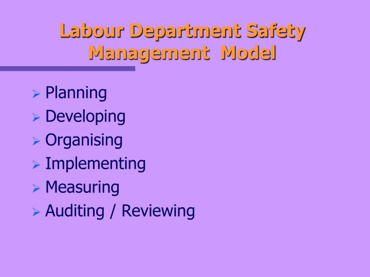 Labour Department Safety Management  Model