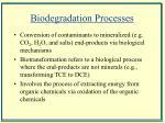 biodegradation processes
