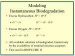 modeling instantaneous biodegradation