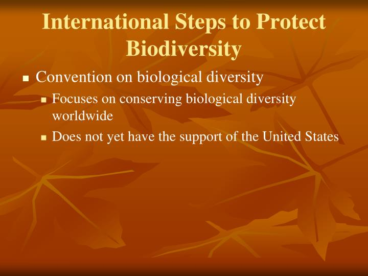 International Steps to Protect Biodiversity
