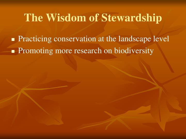 The Wisdom of Stewardship