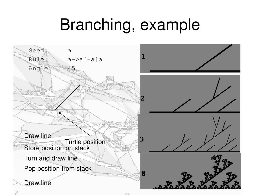 Branching, example