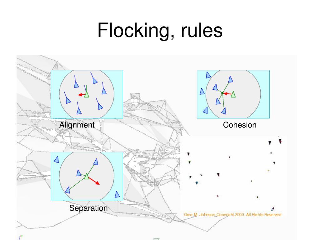 Flocking, rules