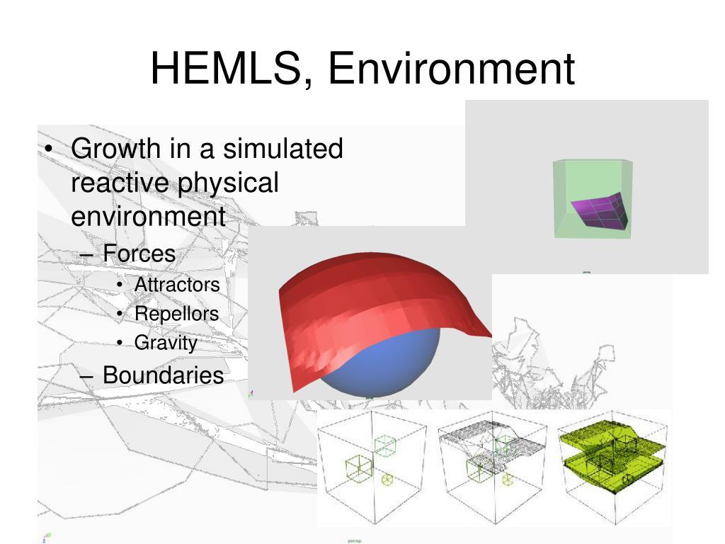 HEMLS, Environment
