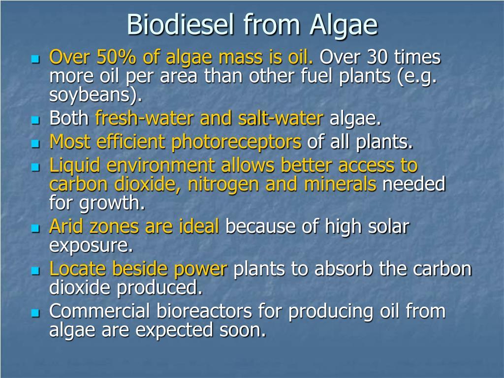 Biodiesel from Algae